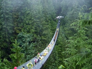 Capilano Suspension Bridge (Bridges)